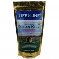 Life Line Organic Ocean Kelp 有機海藻粉 1.5lb