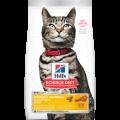 Hill's -10137 成貓泌尿道健康和去毛球貓糧 15lb
