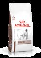 Royal Canin - Hepatic(HF16) 肝臟狗乾糧-6kg