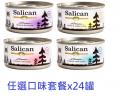 Salican 鮮雞肉系列(清湯) 任選口味套餐x24罐