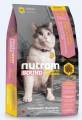 Nutram (S5) 雞肉、三文魚及扁碗豆配方 成貓糧 1.8kg